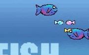 Fish Inc