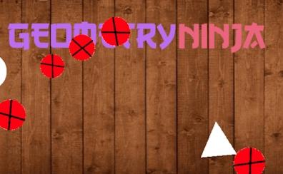 Geometry Ninja