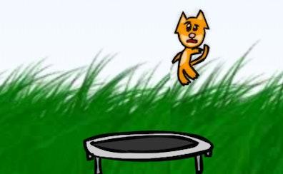 Kitten Cannon