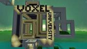 Voxel University