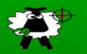 Sheep Cull